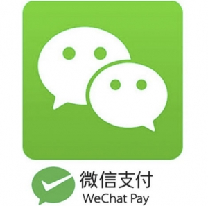 WeChat Pay is one of the leading mobile paymentsolutions in China and is actively used by some 600 million users every month, with the numbers rising all the time.